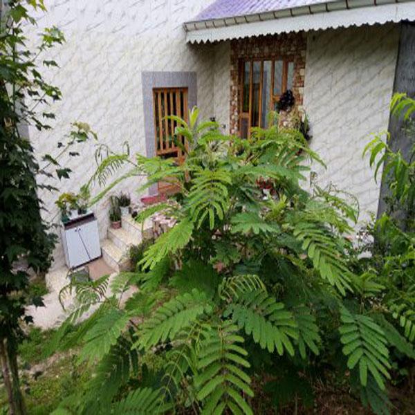 اجاره ویلا جنگلی اطراف فومن با قیمت ارزان و چشم اندازی زیبا و رو به طبیعت
