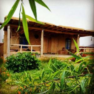 اجاره باغ به صورت روزانه در مزرعه سبز و ارگانیک کیکم کرمانشاه با قیمت فوق العاده ارزان
